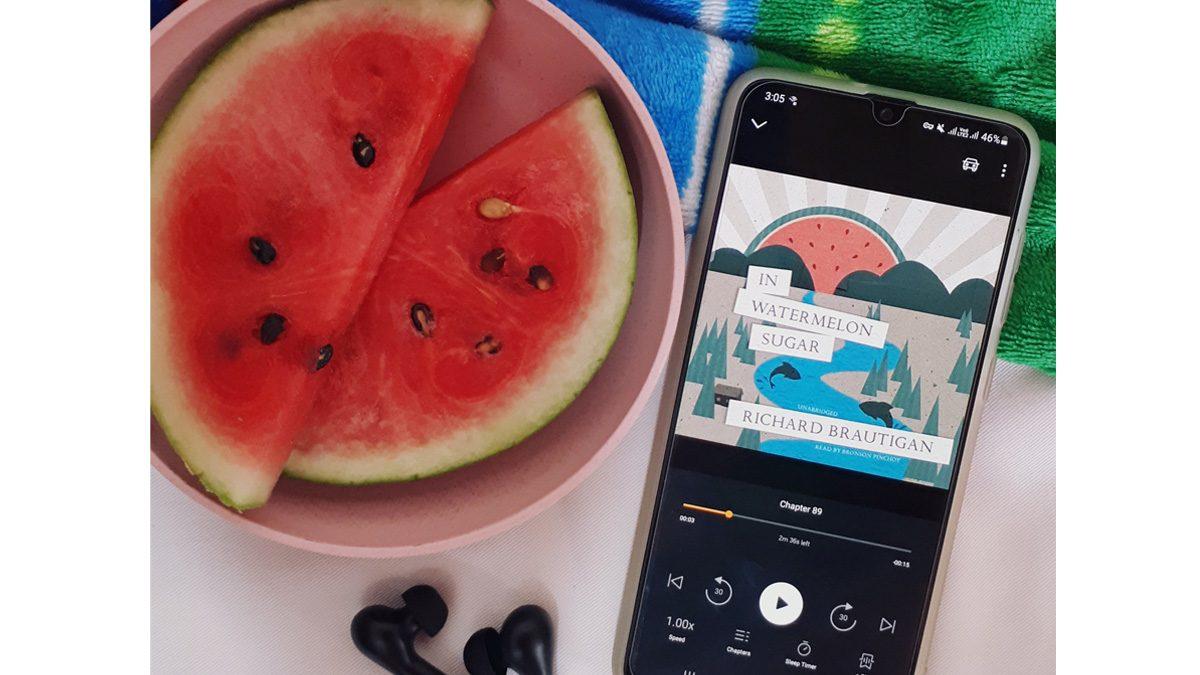 "Review:  ""In Watermelon Sugar"" by Richard Brautigan — Watermelon Sugar High"