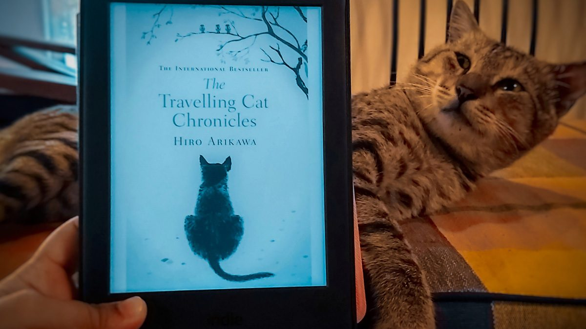 """Review: """"The Travelling Cat Chronicles"""" by Hiro Arikawa — Saying Goodbye To A Friend"""